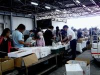 20130601_船橋中央卸売市場_ふなばし楽市_0923_DSC00084