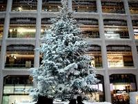 20131218_東京都千代田区_KITTE_クリスマスツリー_1354_DSC05025
