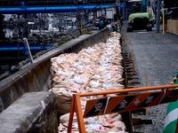 20110402_東日本大震災_船橋市日の出2_堤防破壊_0955_DSC09972