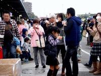 20121111_船橋市市場1_船橋中央卸売市場_農水産祭_1013_DSC01003