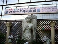 20130615_習志野市_谷津サンプラザ商店街_女神_171000_DSC02534