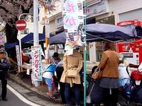 20150404_松戸市六高台の桜通り_六実桜まつり_1201_DSC08359