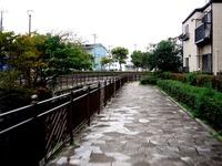 20151011_船橋市夏見3_耳が切られたウサギ_1506_DSC02652