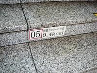 20140723_JR京葉線_東京駅_ホーム階段_カロリー_0821_DSC00376