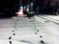 20160119_東京都_強い冬型の低気圧_積雪_大雪_0806_DSC00036T