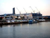 20150919_船橋港親水公園_ふなばしハワイアンフェス_1710_DSC08995