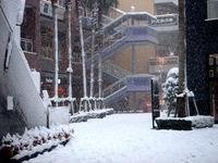20140208_関東に大雪_千葉県船橋市南船橋地区_1526_DSC04398