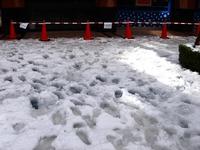20140215_千葉県船橋市南船橋地区_関東に大雪_1221_DSC05208