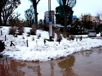20140215_関東に大雪_津田沼_積雪_記録的大雪_1602_DSC05391