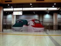 20150902_JR東日本_東京駅_新幹線_巨大顔出し看板_0721_DSC06040