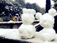 20140208_浦安市舞浜_東京ディズニーリゾート_大雪_442