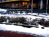 20140215_千葉県船橋市南船橋地区_関東に大雪_1701_DSC05547