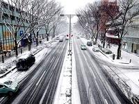 20160119_東京都_強い冬型の低気圧_積雪_大雪_0807_DSC00023T