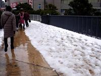 20140215_関東に大雪_津田沼_積雪_記録的大雪_1412_DSC05301