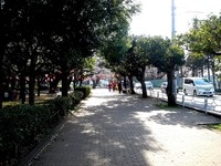 20140329_船橋市薬円台4_薬円台公園_桜_1530_DSC01478