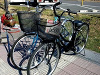 20150211_船橋市若松2_若松団地_自転車出張修理_1229_DSC00124