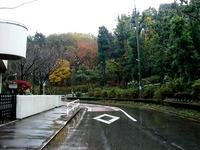 20141129_森の音楽会_習志野市立藤崎小学校_1142_DSC00272