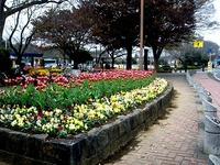 20151122_船橋市金堀町_ふなばしアンデルセン公園_1024_DSC08699