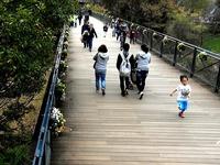 20151122_船橋市金堀町_ふなばしアンデルセン公園_1223_08044