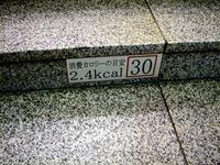 20140723_JR京葉線_東京駅_ホーム階段_カロリー_0821_DSC00378