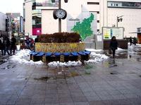 20140215_関東に大雪_津田沼_積雪_記録的大雪_1606_DSC05405