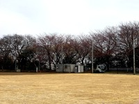 20150328_船橋市夏見2_夏見台近隣公園野球場_改修_1044_DSC07103