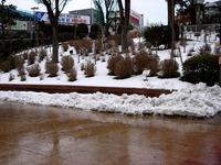 20140215_関東に大雪_津田沼_積雪_記録的大雪_1602_DSC05390