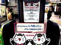 20151101_JR新浦安駅_マスコットキャラクター_しうねっこ_012