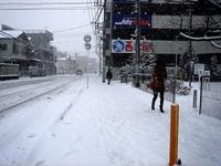 20140208_関東に大雪_千葉県船橋市南船橋地区_1455_DSC04337
