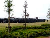 20141102_幕張新都心_巨大迷路_豊砂公園_1230_DSC05510