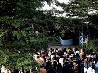 20160111_浦安市_成人式_東京ディズニーランド_142