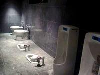 20140903_世界のトイレ_不思議なトイレ_n2o_1211_94603_1