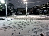 20160118_東京都_強い冬型の低気圧_積雪_大雪_0729_DSC00026T