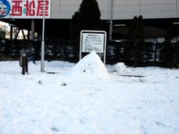 20140209_関東に大雪_千葉県船橋市南船橋地区_1504_DSC04455