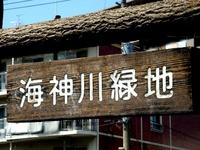 20140412_船橋市海神町南1_海神川緑地_桜_1305_DSC04399