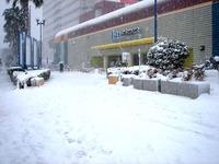 20140208_関東に大雪_千葉県船橋市南船橋地区_1512_DSC04372