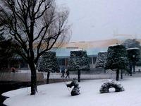 20140208_浦安市舞浜_東京ディズニーリゾート_大雪_022