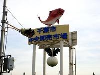 20140125_千葉市中央卸売市場_市民感謝デー_1143_DSC02284