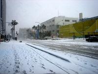 20140208_関東に大雪_千葉県船橋市南船橋地区_1546_DSC04429