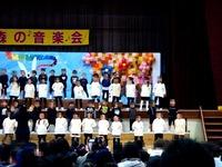 20141129_森の音楽会_習志野市立藤崎幼稚園_1304_DSC00293