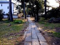 20140103_船橋市東船橋7_茂呂浅間神社_初詣_1550_DSC09030