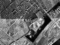 1974年_市川市福栄4_千葉県行徳野鳥観測舎_行徳内陸性湿地_122
