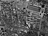 1974年_船橋市市場1_船橋地方卸売市場_112