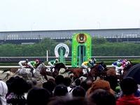 20140505_船橋競馬場_かしわ記念_ふなっしー_1656_14030
