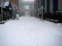 20140208_関東に大雪_千葉県船橋市南船橋地区_1513_DSC04377