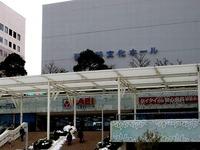 20140215_関東に大雪_津田沼_積雪_記録的大雪_1412_DSC05305T