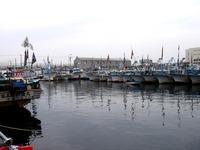 20160403_船橋漁港_水神祭_船橋市漁業協同組合_1051_DSC00051