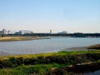 20070430_市川市_千葉県行徳野鳥観測舎_1249_DSC02331