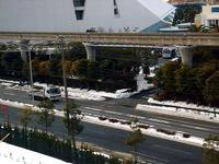 20140210_関東に大雪_浦安市舞浜地区_積雪_0814_DSC04787