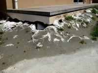 20120429_浦安市立高洲小学校_地震被害_1240_DSC01376